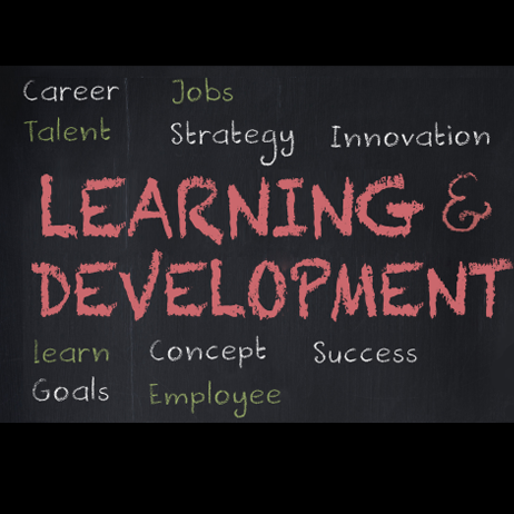 White Paper: How to Measure the Value of Learning and Development Programs