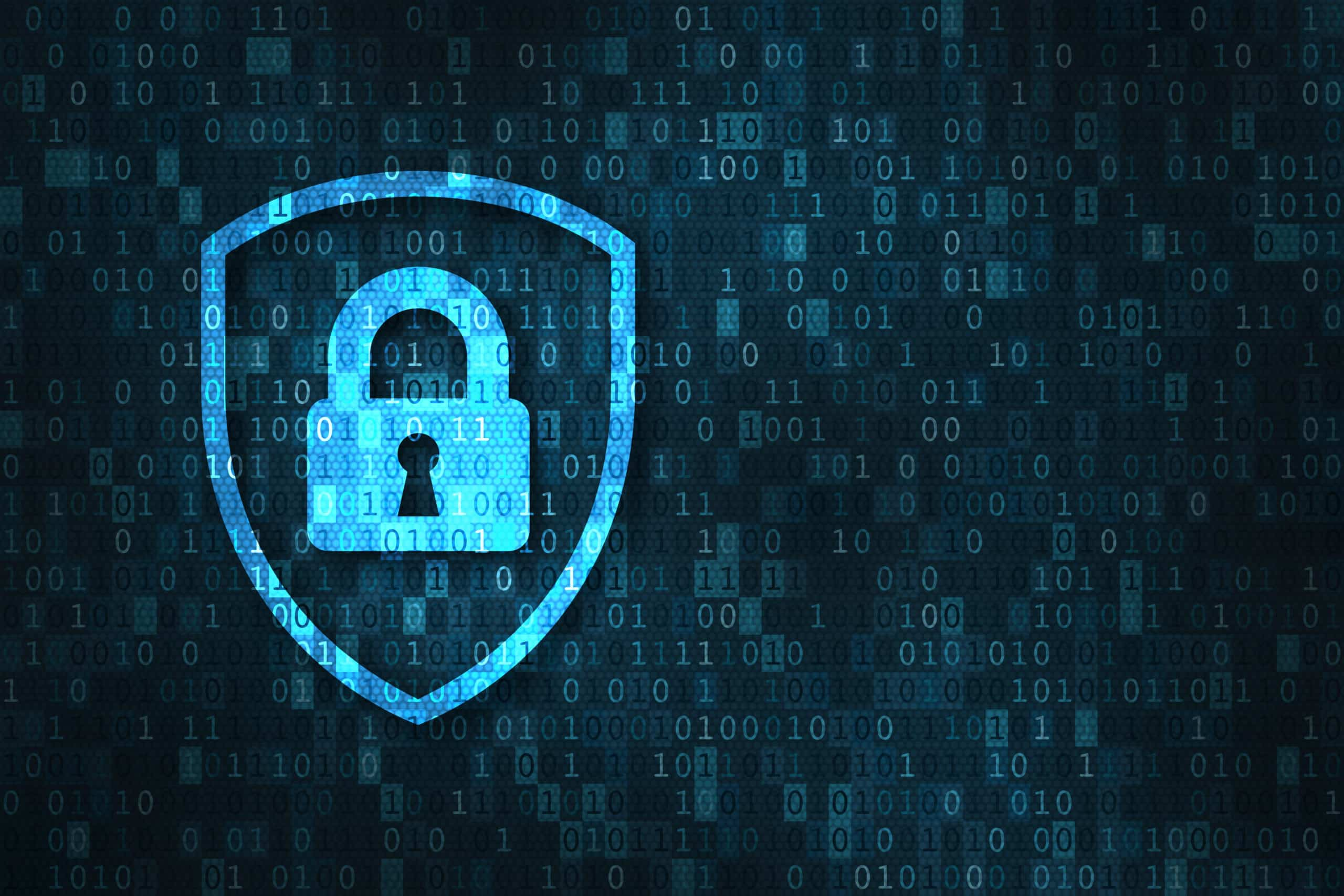 Improving Security Posture with Vector's Cybersecurity Training